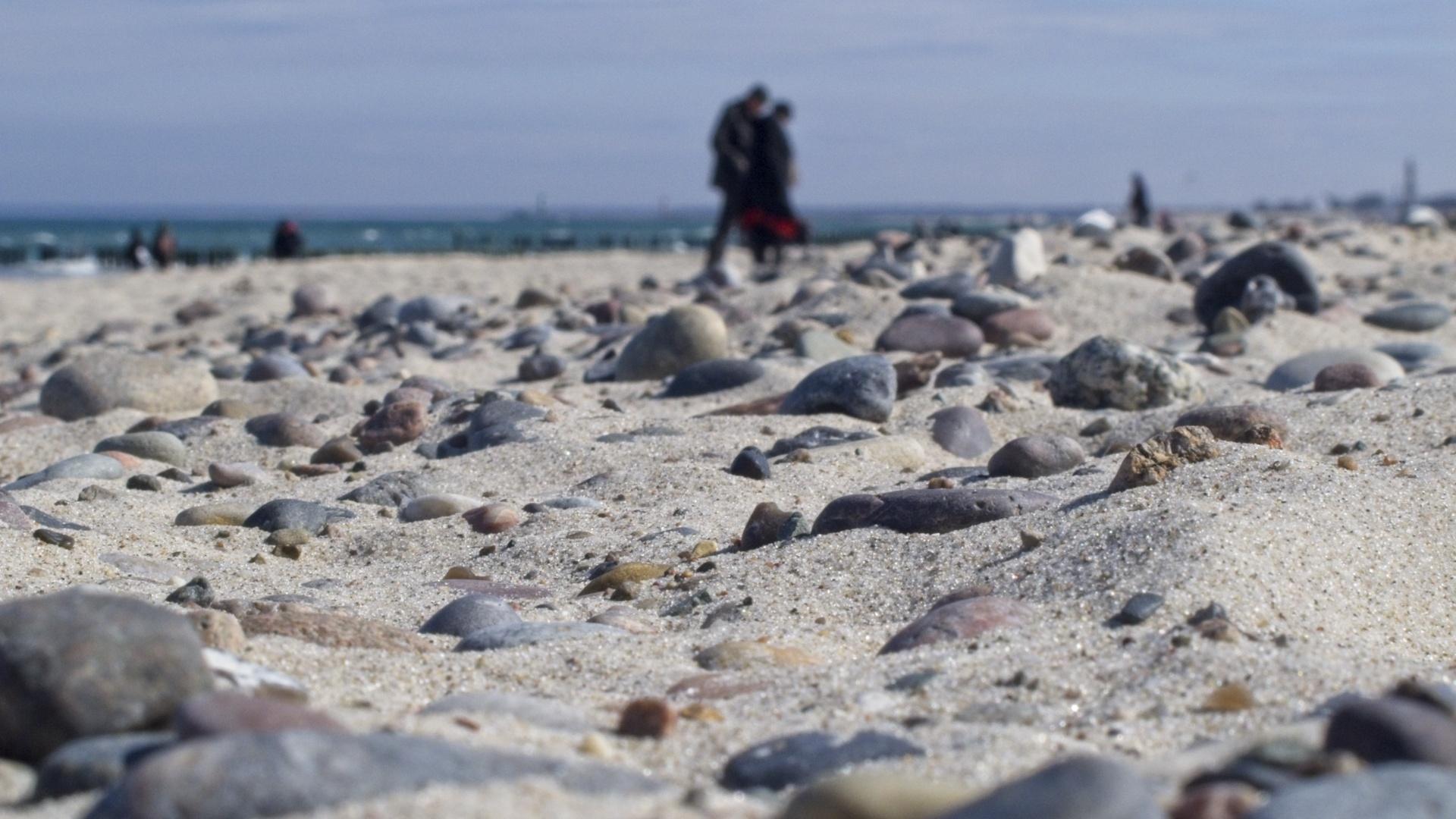 Strandgut / Flotsam